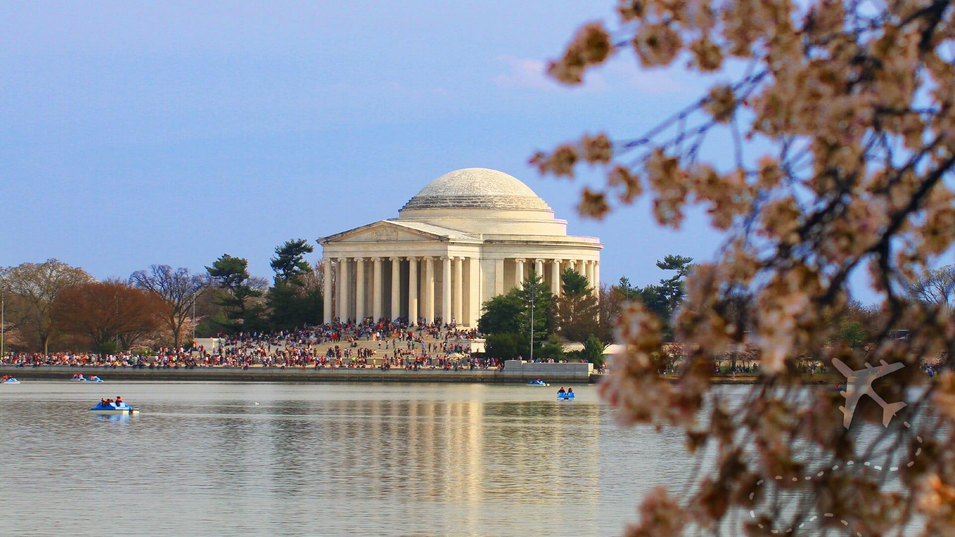 Cherry Blossom Festival Jefferson Memorial