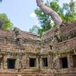 Ta Prohm temple in Angkor